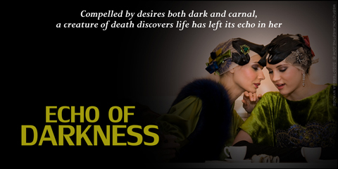 echo-of-darkness-480--teresa-wymore-dark-fantasy